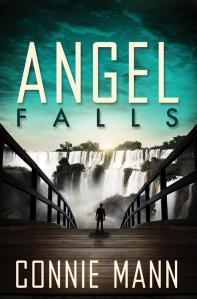 Angel Falls by Connie Mann